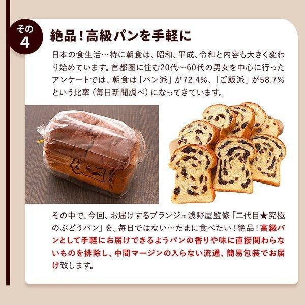 パン 食パン 送料無料 究極のぶどうパン(pn)|organic|06