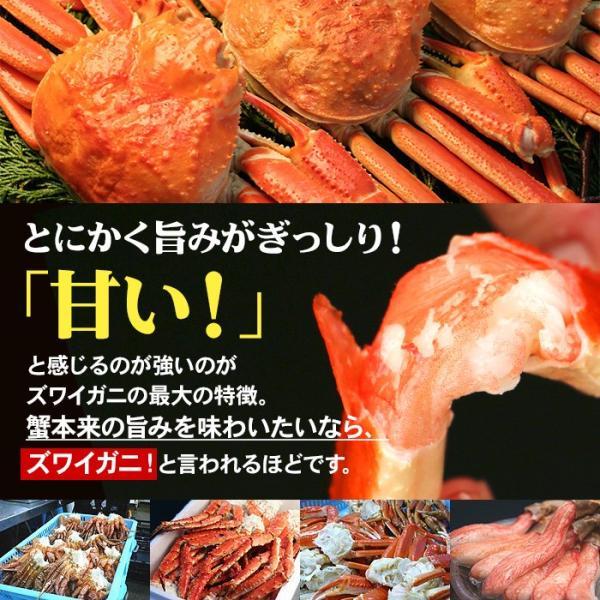 カニ かに ズワイガニ 約5kg  ノルウェー産 20〜25肩 蟹 ずわい ズワイ蟹 ずわい蟹 ボイルズワイ ボイル 約5kg 送料無料 (lf)|organic|02