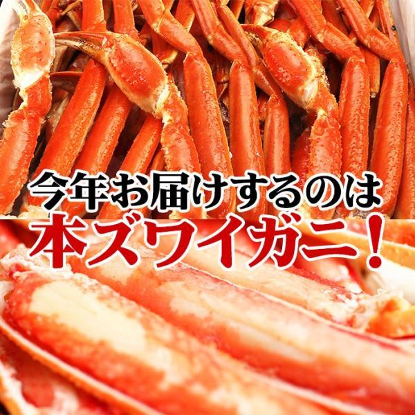 カニ かに ズワイガニ 約5kg  ノルウェー産 20〜25肩 蟹 ずわい ズワイ蟹 ずわい蟹 ボイルズワイ ボイル 約5kg 送料無料 (lf)|organic|03