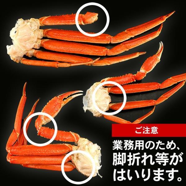 カニ かに ズワイガニ 約5kg  ノルウェー産 20〜25肩 蟹 ずわい ズワイ蟹 ずわい蟹 ボイルズワイ ボイル 約5kg 送料無料 (lf)|organic|05