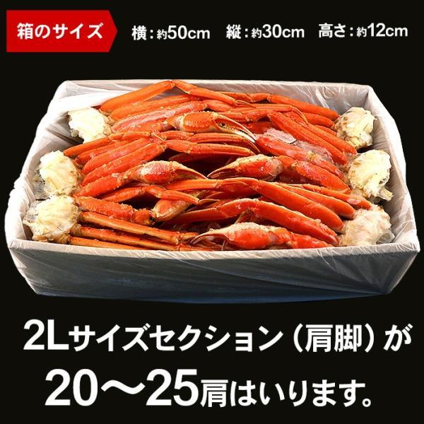 カニ かに ズワイガニ 約5kg  ノルウェー産 20〜25肩 蟹 ずわい ズワイ蟹 ずわい蟹 ボイルズワイ ボイル 約5kg 送料無料 (lf)|organic|06