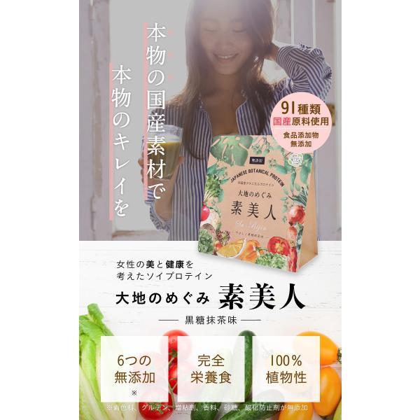 純国産ボタニカルプロテイン 大地のめぐみ素美人 250g 黒糖抹茶味 女性のための美容専門 ソイ タンパク質 美容成分配合 送料無料|organickitchen|02