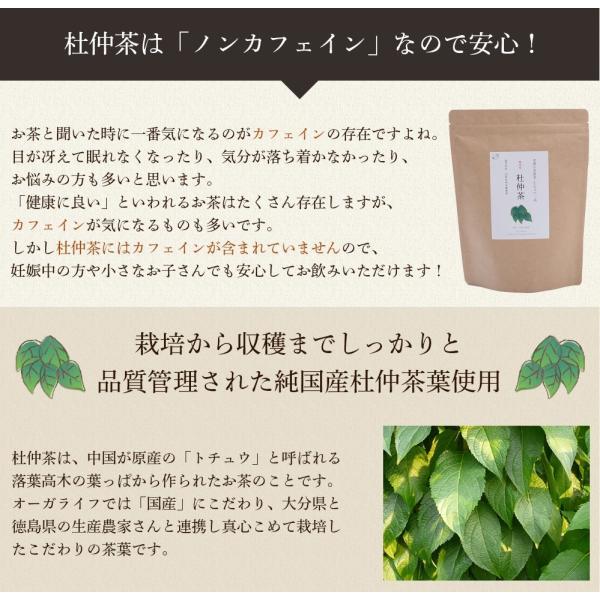 杜仲茶 ティーバッグ 3g x 80包 杜ちゅう茶 とちゅう茶 カフェインレス 国産  茶 健康茶 送料無料|organickitchen|08