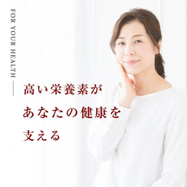黒にんにく 国産 A品 バラ 31片 約1ヵ月分 150g 九州・四国産 父の日 送料無料|organickitchen|10