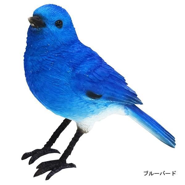 バーディ ビル ブルーバード 青い鳥 小鳥のオブジェ 置物 インテリア