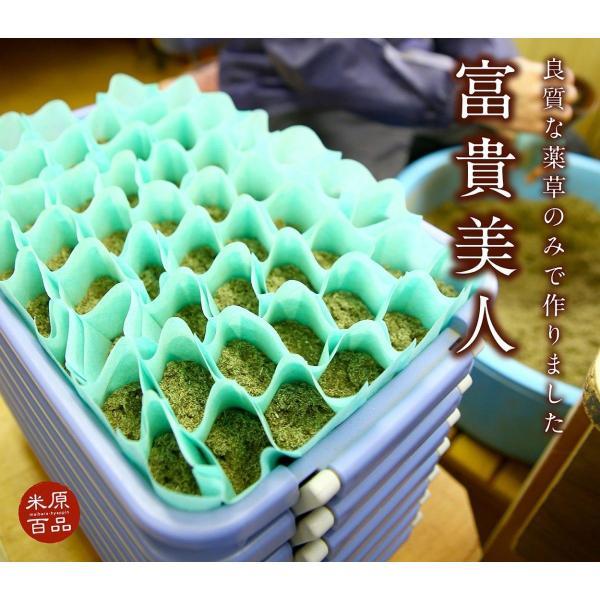 無添加薬草入浴剤 富貴美人(大サイズ30g×10p)7種の天然生薬配合 伊吹薬草  お土産 米原市特産品|orite|02