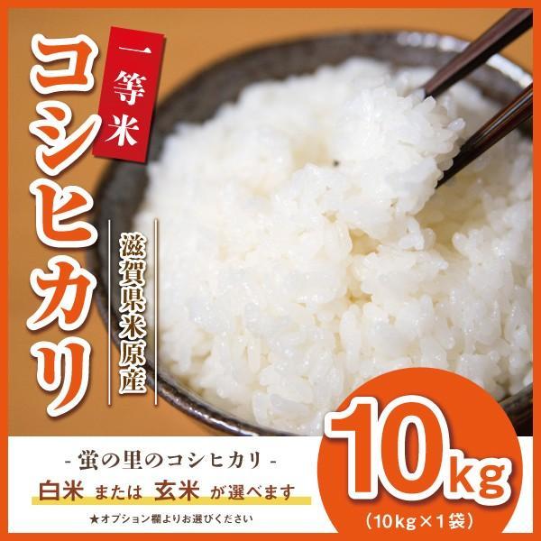 コシヒカリ 10kg 残りわずか 滋賀県産 蛍の里の条抜き米 10kg 近江米 平成30年産|orite