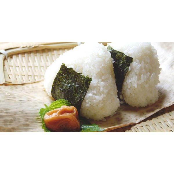 コシヒカリ 10kg 残りわずか 滋賀県産 蛍の里の条抜き米 10kg 近江米 平成30年産|orite|03