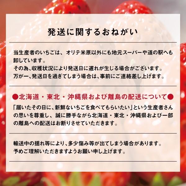 いちご 食べ比べ 紅ほっぺ もういっこ 朝摘み Lサイズ〜 約300g (約13〜15粒)×4パック 滋賀県産 川瀬農園の紅ほっぺ 苺 ストロベリー|orite|04
