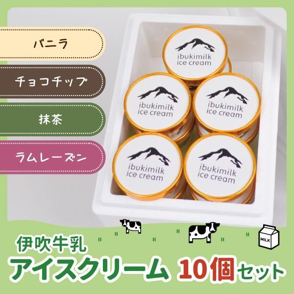 伊吹牛乳のアイスクリームセット 10個 |orite