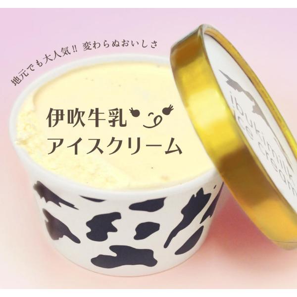 伊吹牛乳のアイスクリームセット 10個 |orite|02