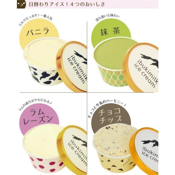 伊吹牛乳のアイスクリームセット 10個 |orite|03