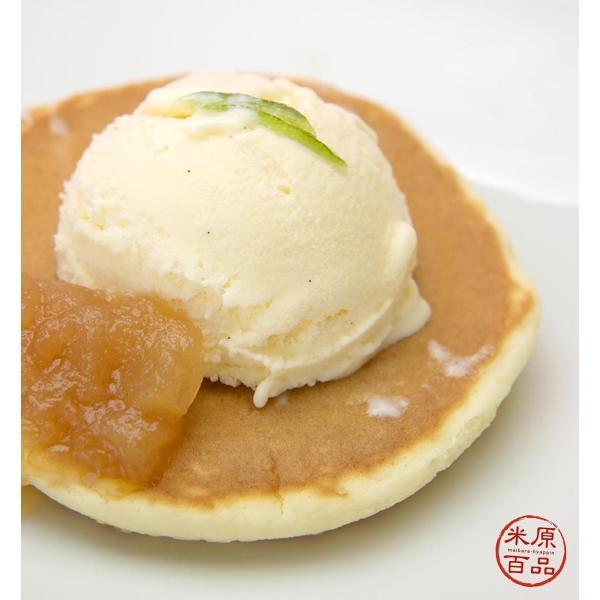 伊吹牛乳のアイスクリームセット 10個 |orite|04