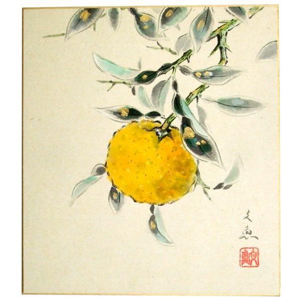 肉筆色紙 季節冬 柚子 中谷文魚