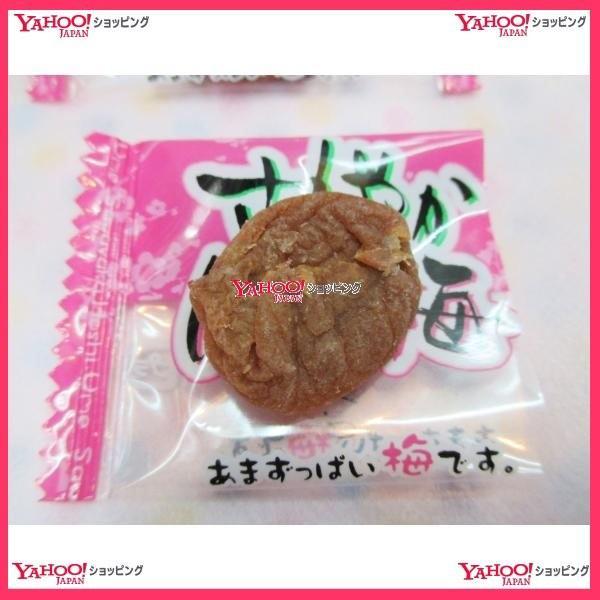 おかし企画 OE石井ピンク袋の さわやか ほし梅