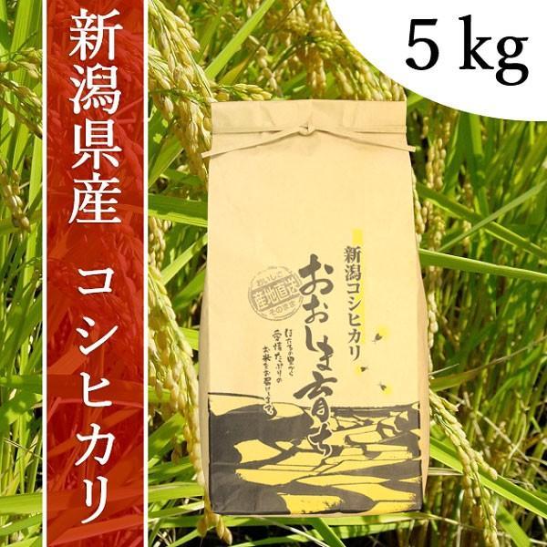産地直送 新潟県産 令和元年産 おおしま育ち コシヒカリ 玄米 5k|oshima-sodachi