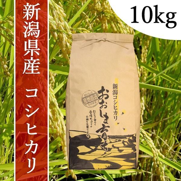 産地直送 新潟県産 令和2年産 おおしま育ち コシヒカリ 玄米 10kg|oshima-sodachi