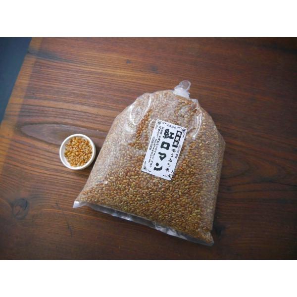 古代米 無農薬 有機肥料 赤米うるち米 紅ロマン(1kg)