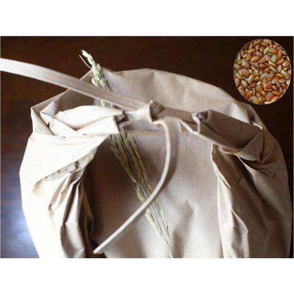 古代米 無農薬 有機肥料 赤米うるち米 紅ロマン(30kg)