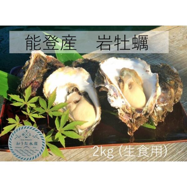 岩牡蠣 能登産 2 kg   (6〜8個)(牡蠣ナイフ、片手用軍手付) 送料無料 otasuisan