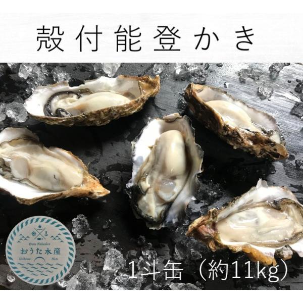 能登かき 殻付(1斗缶 約80個)(専用ナイフ付)|otasuisan