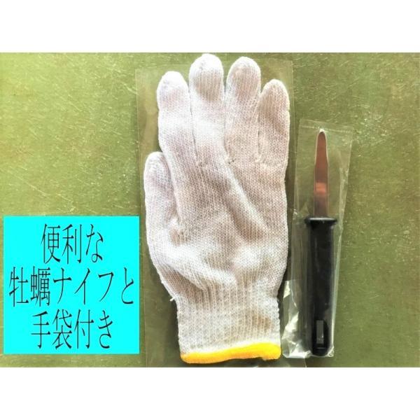 能登かき 殻付(1斗缶 約80個)(専用ナイフ付)|otasuisan|03