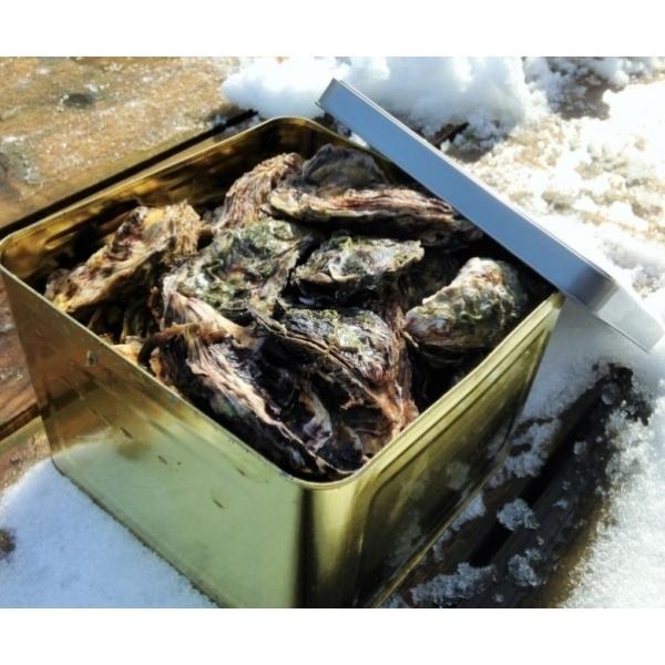 能登かき 殻付(半缶  約40個)(牡蠣ナイフ、片手用軍手付)|otasuisan|02