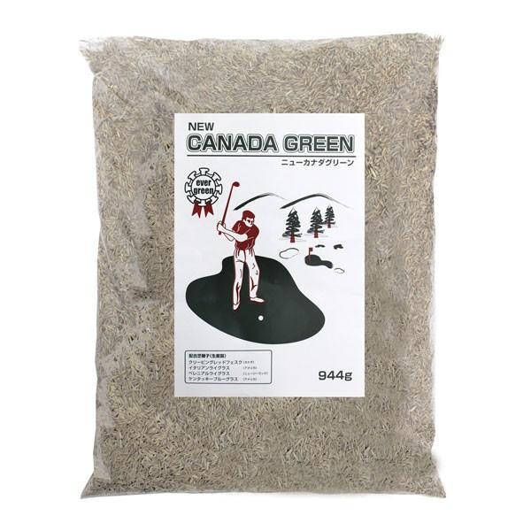 芝生の種 ニューカナダグリーン ガーデニング 芝生 芝の種