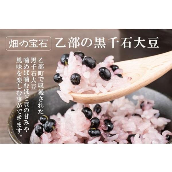 豆ごはんの素(2合・5回分)|otobesousei|02