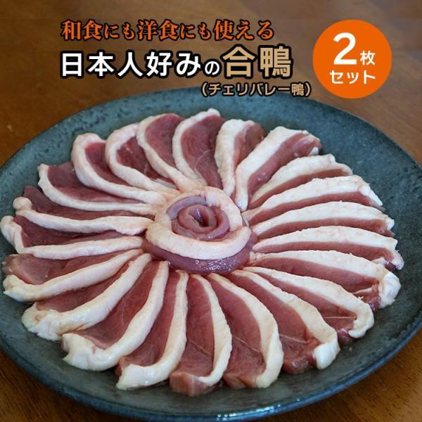鴨肉 合鴨 胸肉 鴨ロース肉 2枚セット 約360-400g ハンガリー産 冷凍 鴨胸肉 チェリバレー鴨 鴨 ブロック フィレ