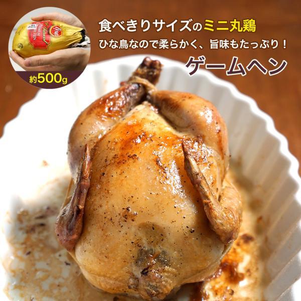 丸鶏 ミニ地鶏 ゲームヘン 18オンス 1羽 約500g アメリカ産 雛鳥 鶏肉 丸ごと ホール チキン
