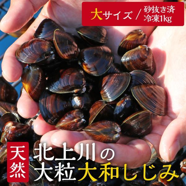 【条件付き送料無料】北上川の天然大和しじみ(大サイズ/1kg) 冷凍