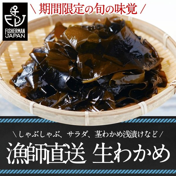 感動の生わかめ産直ギフト(約500g)冷蔵 ◯|otr-ishinomaki