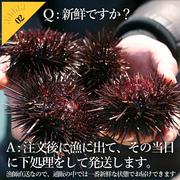 【送料無料】お造り生うに(6個〜8個/殻付き大サイズ)冷蔵 ◯|otr-ishinomaki|04