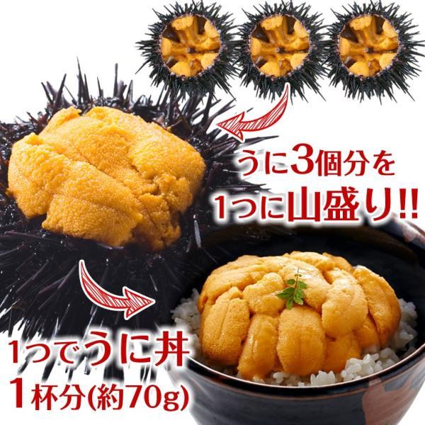 【送料無料】極み詰めうに(約70g×4個/大サイズ)冷蔵 ◯|otr-ishinomaki|02