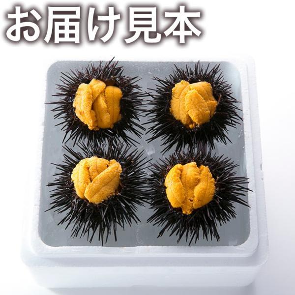 【送料無料】極み詰めうに(約70g×4個/大サイズ)冷蔵 ◯|otr-ishinomaki|03