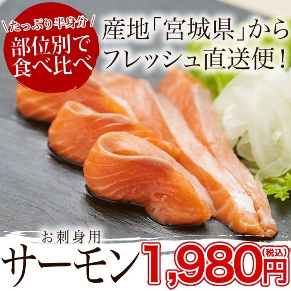 宮城のお刺身サーモン(半身/約600g)冷凍 ◯|otr-ishinomaki