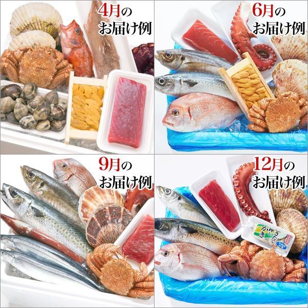 おやじのおまかせセット(旬の海鮮 約8種)冷蔵 ☆|otr-ishinomaki|03