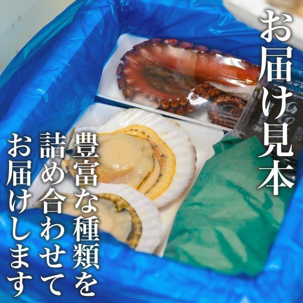 おやじのおまかせセット(旬の海鮮 約8種)冷蔵 ☆|otr-ishinomaki|04