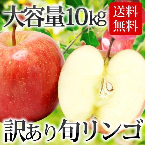 【条件付き送料無料】東北産 訳ありリンゴ(バラ詰め 約10kg/目安32〜50玉)常 温