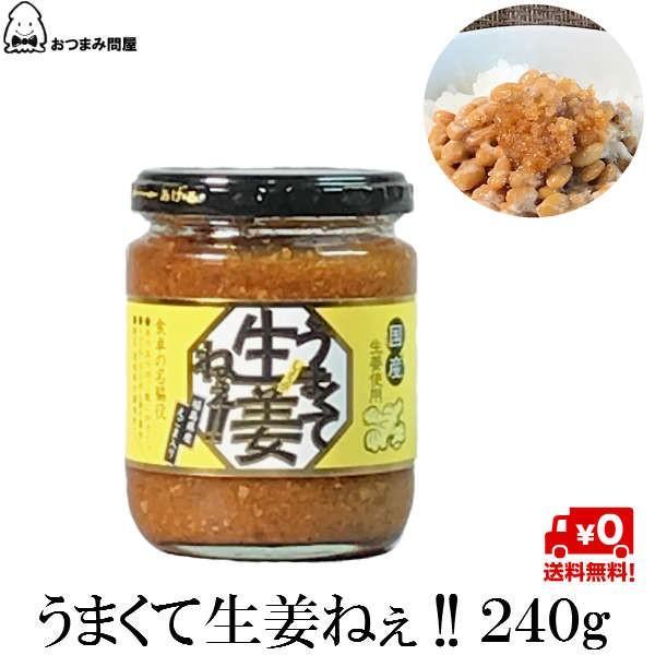 調味料 生姜 うまくて生姜ねぇ 240g x 1個 福島 ふくしま|otumamidonya