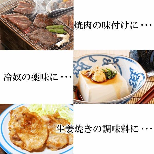 調味料 生姜 うまくて生姜ねぇ 240g x 1個 福島 ふくしま|otumamidonya|04