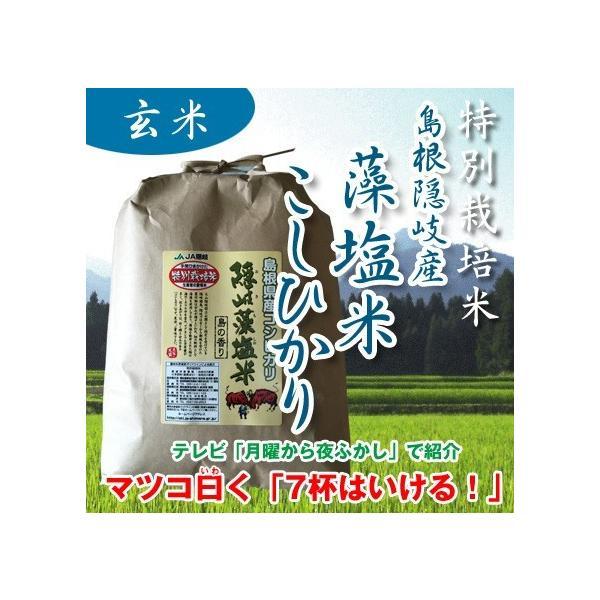令和2年産 特別栽培米 島根県隠岐 藻塩米こしひかり 玄米 1kg