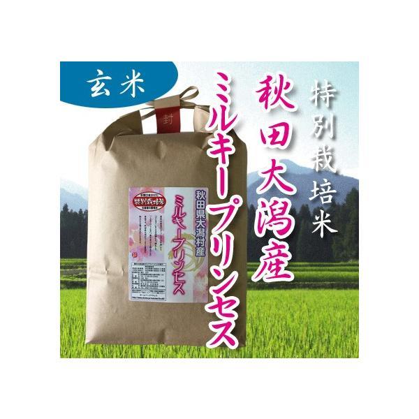 30年産 特別栽培米 秋田大潟村産ミルキープリンセス 低アミロース米 玄米 5kg|owarinokomegura