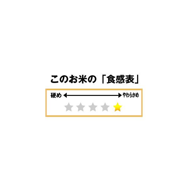 30年産 特別栽培米 秋田大潟村産ミルキープリンセス 低アミロース米 玄米 5kg|owarinokomegura|02
