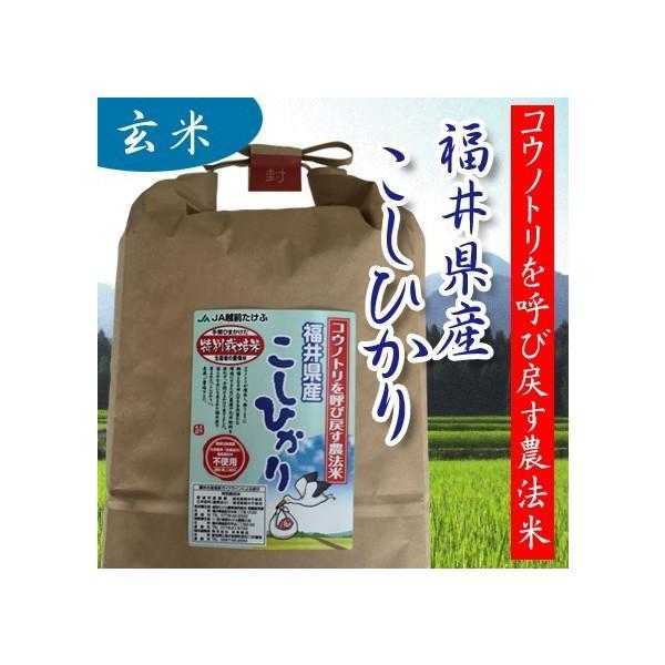 令和2年産 玄米 1kg 無農薬米 コウノトリ呼び戻す農法米 福井産コシヒカリ オーガニック