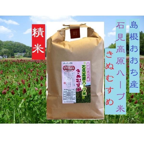 29年産 特別栽培米 島根おおち産 石見高原ハーブ米 きぬむすめ 精米 1kg|owarinokomegura