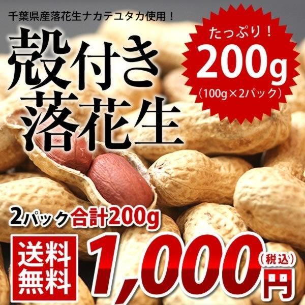 落花生 ナカテユタカ 千葉県産 殻付き200g(100g×2) お試し品 送料無料 ピーナッツ おつまみ ALL¥1000 ゆうパケット