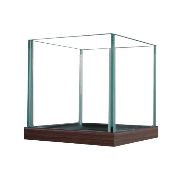 めだか水槽サイコロルーム150(15X15X14.8cm)スクエア15cm2.4リットルすいそうおしゃれ正方形小さめインテリアメ