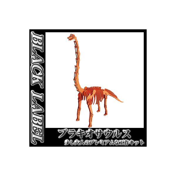 hacomo / BLACK LABEL ブラキオサウルス(オレンジ)   /恐竜 ダンボール工作  知育玩具 模型 夏休み 自由研究 (B-2526_012672)|p-kaneko